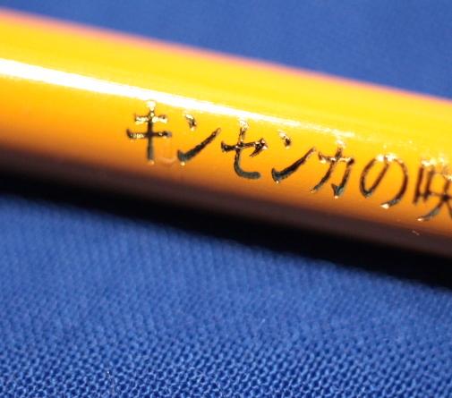 色鉛筆・キンセンカの咲く頃