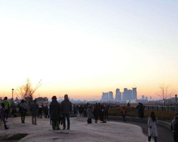 公園で初日の出