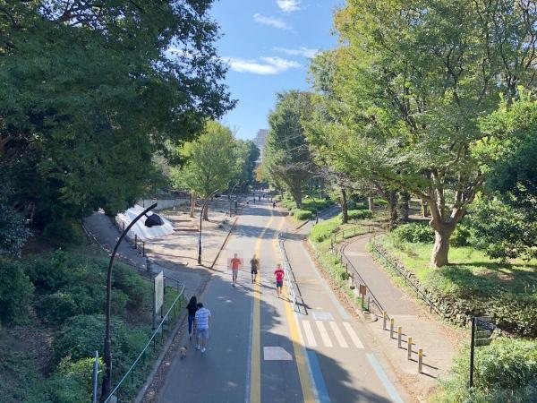 駒沢公園ジョギングコース