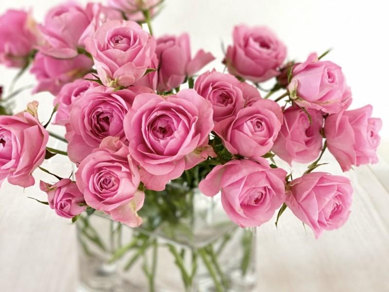 ピンクの薔薇の花束